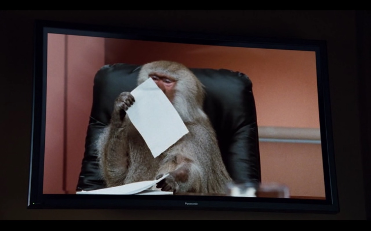 Panasonic TV – Dinner for Schmucks (2010) Movie Product Placement