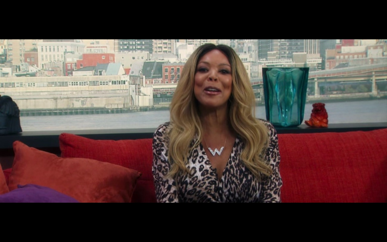 The Wendy Williams Show – Mike and Dave Need Wedding Dates (2016) Movie Product Placement