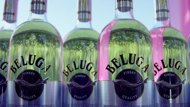 Beluga vodka in BACK IT UP by Prince Royce (2015) Official Music Video Product Placement