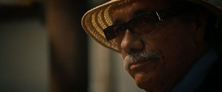 Blinde Case Closed sunglasses worn by Edward James Olmos in 2 Guns (2013) - Movie Product Placement