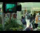 Brookstone - The Terminal (2004)