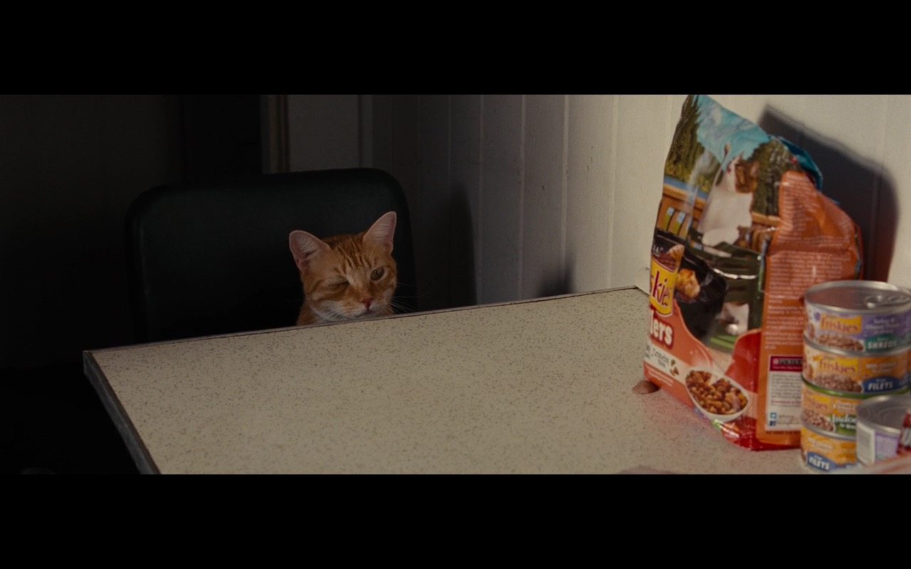 Friskies Cat Food – Gifted (2017) Movie Product Placement