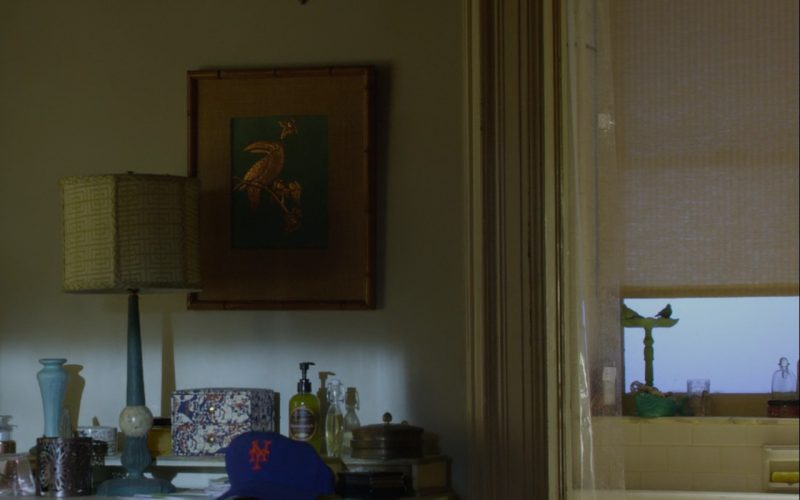 New York Giants Baseball Hat – Friends with Benefits (2011)