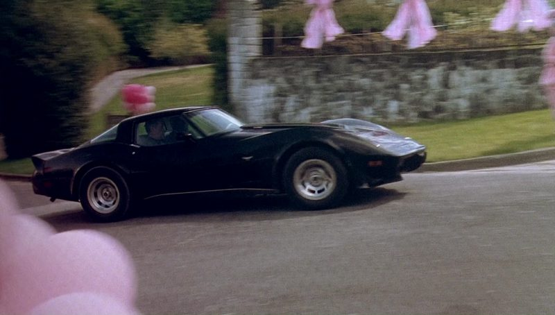 Chevrolet Corvette C3 – Bird on a Wire (1990) - Movie Product Placement
