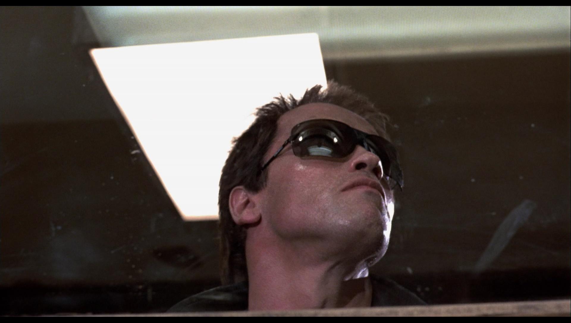 d67f3704e0 Gargoyle Sunglasses Terminator 2