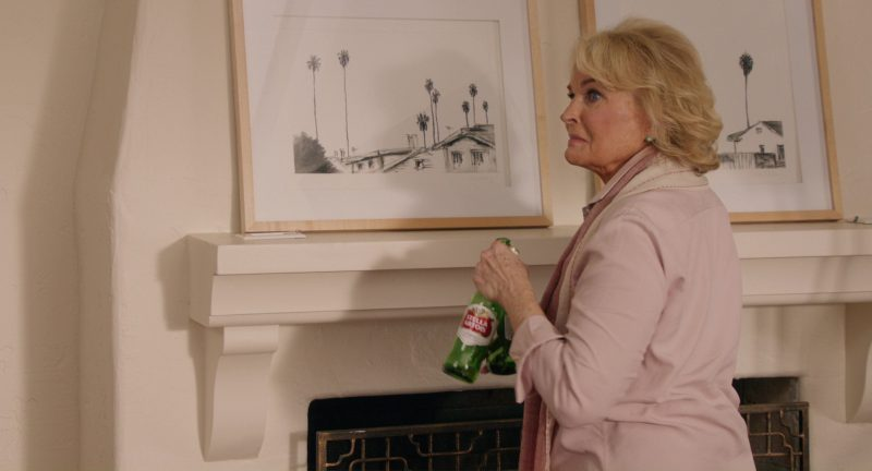 Stella Artois Beer in Home Again (2017) - Movie Product Placement