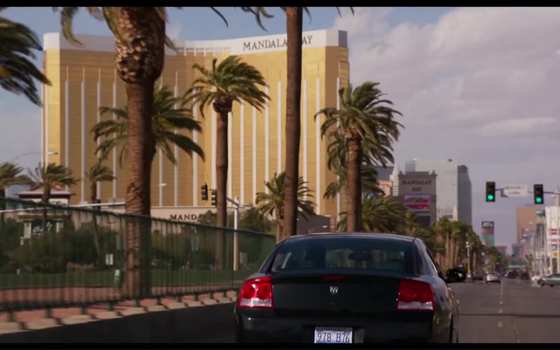 Mandalay Bay Resort and Casino in Show Dogs (2)