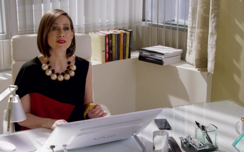 Sony All-In-One Vaio Computer Used by Miriam Shor in Younger (1)