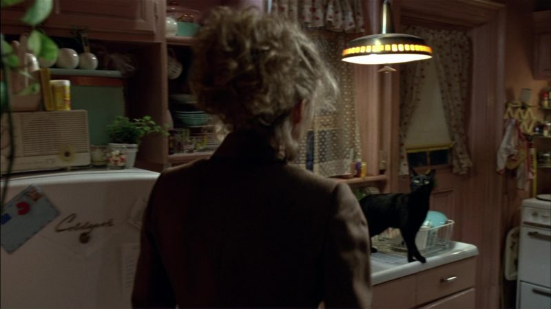 Coldspot Refrigerator Used by Michelle Pfeiffer (Catwoman) in Batman Returns (1992) Movie Product Placement