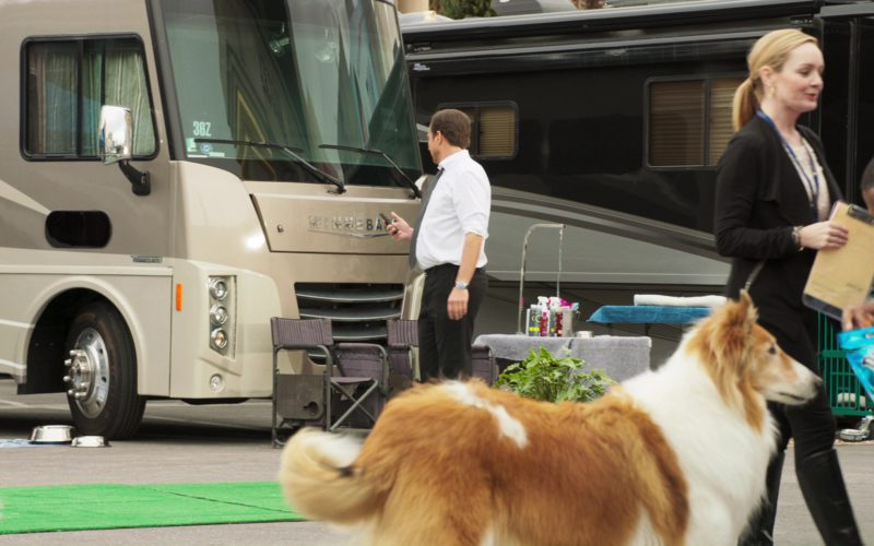 Winnebago Motor Homes in Show Dogs
