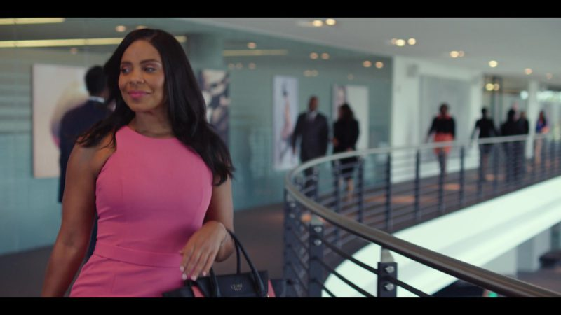 Celine Handbag Worn by Sanaa Lathan in Nappily Ever After (2018) Movie Product Placement