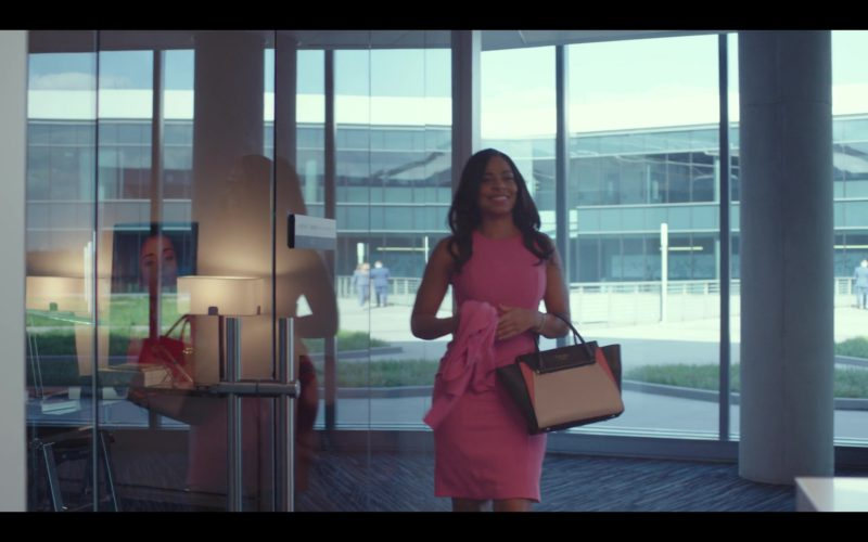 Celine Handbag Worn by Sanaa Lathan in Nappily Ever After (4)