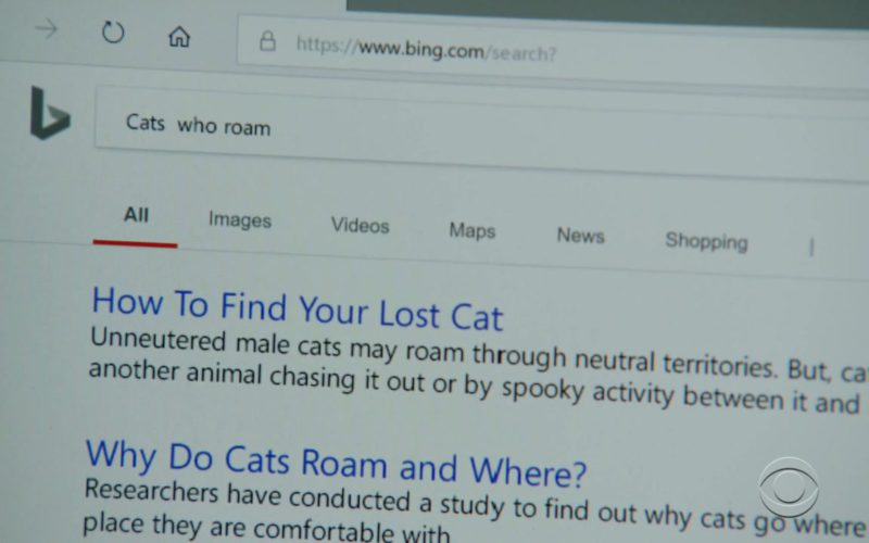Bing Search Engine in Magnum P.I.