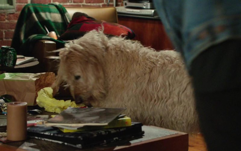 Dogfish Head Beer in Dog Days (1)