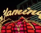 Flamingo Las Vegas Hotel and Casino in Fear and Loathing in ...