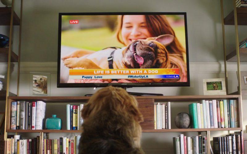 Samsung TV in Dog Days (2)