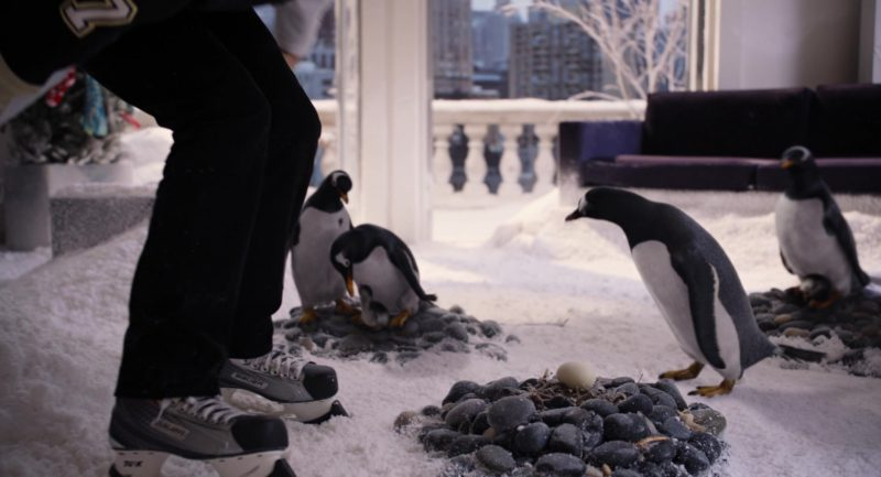 Bauer Ice Hockey Skates Worn By Jim Carrey in Mr. Popper's Penguins (2011) - Movie Product Placement
