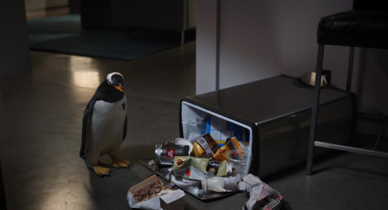 Illy and Carr's in Mr. Popper's Penguins (2011) - Movie Product Placement