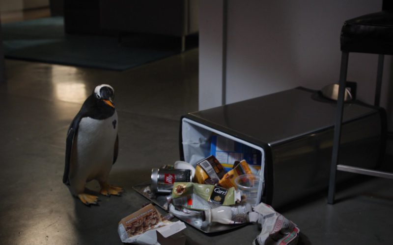 Illy and Carr's in Mr. Popper's Penguins