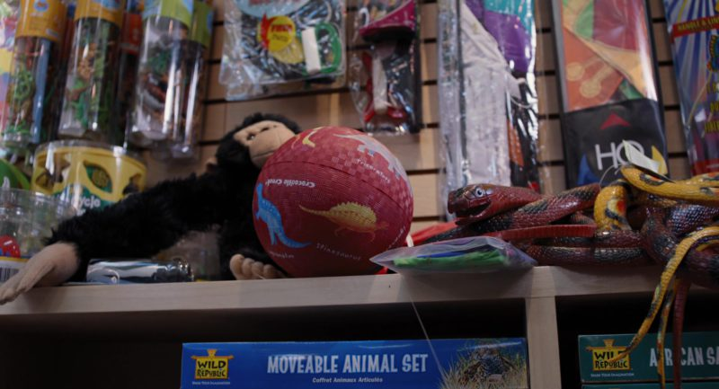 Wild Republic Stuffed Animals in Mr. Popper's Penguins (2011) Movie Product Placement