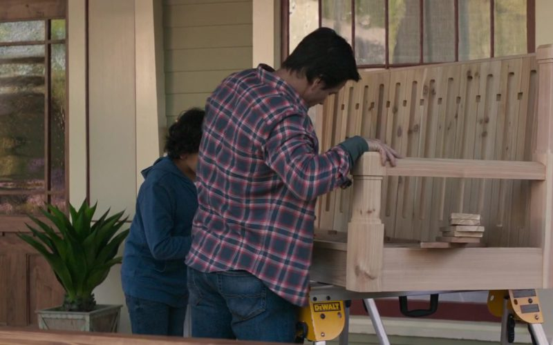 DeWalt in Instant Family (1)