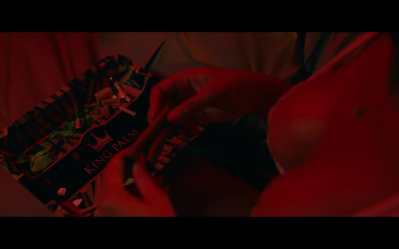 "King Palm Natural Leaf Rolls in ""Lower Level"" by Moneybagg Yo ft. Kodak Black (1)"