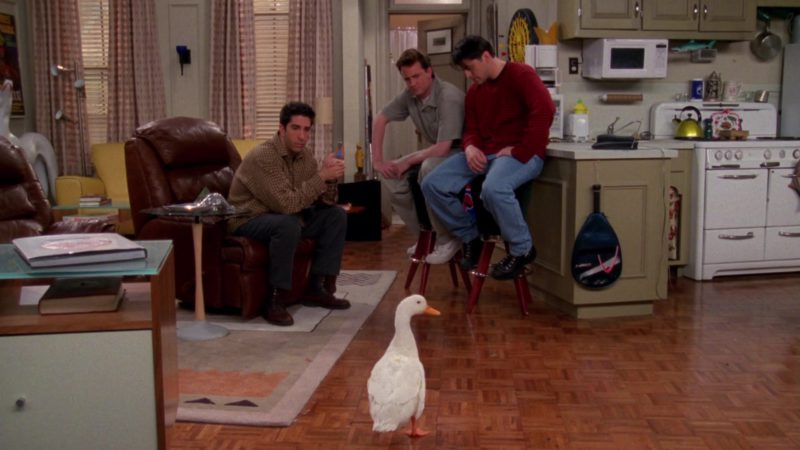 "Nike Shoes Worn by Matthew Perry (Chandler Bing) and HEAD Squash Racket in Friends Season 4 Episode 23 ""The One With Ross' Wedding"" (1998) - TV Show Product Placement"