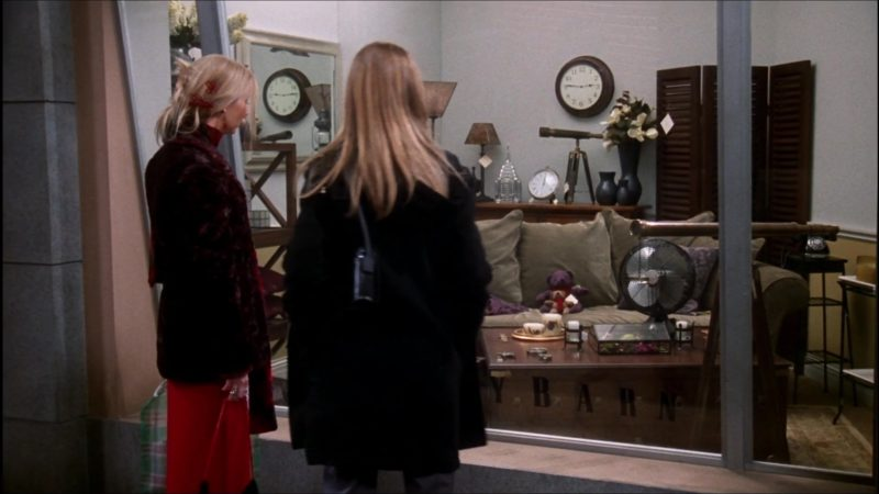"""Pottery Barn Furniture Store in Friends Season 6 Episode 11 """"The One With the Apothecary Table"""" (2000) - TV Show Product Placement"""