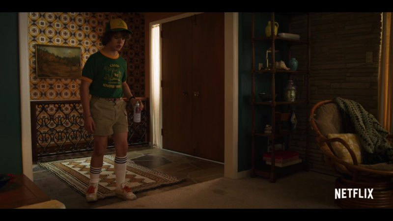 Reebok Sneakers Worn by Gaten Matarazzo (Dustin) in Stranger Things Season 3 (2019) TV Show Product Placement