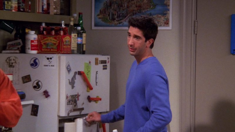"Sierra Nevada Wheat Beer in Friends Season 6 Episode 18 ""The One Where Ross Dates a Student"" (2000) - TV Show Product Placement"