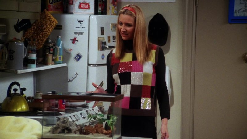 """Stella Artois Beer Pack in Friends Season 7 Episode 10 """"The One With the Holiday Armadillo"""" (2000) - TV Show Product Placement"""