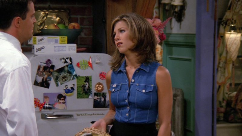 "Westinghouse Fridge (Refrigerator) in Friends Season 2 Episode 3 ""The One Where Heckles Dies"" (1995) - TV Show Product Placement"