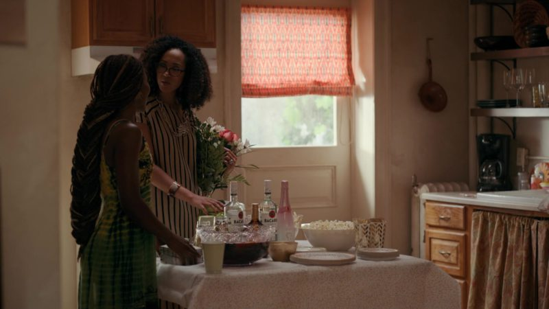 Bacardi Rum Bottles in She's Gotta Have It - Season 2, Episode 8, #OnTheComeUpTheComeDown&TheCome'Round (2019) TV Show Product Placement