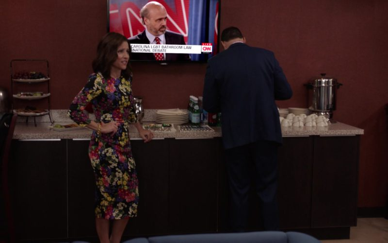 CNN TV Channel in Veep (5)