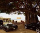 Chevrolet Corvette Stingray Car in Hawaii Five-0 – Season 9,...