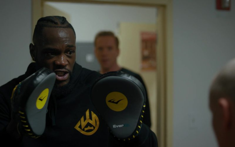 Everlast Boxing Punch Mitts in Billions
