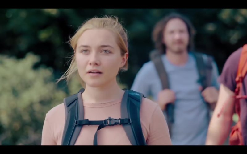The North Face Backpack Used by Florence Pugh in Midsommar (1)