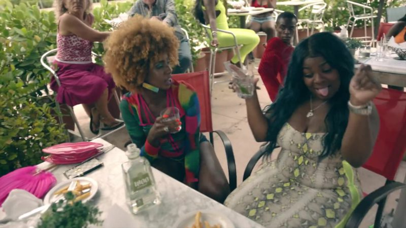 1800 Coconut Tequila in Act Up by City Girls (2019) Official Music Video Product Placement
