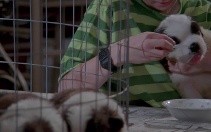 Casio Watch Worn by Christopher Castile in Beethoven's 2nd (3)