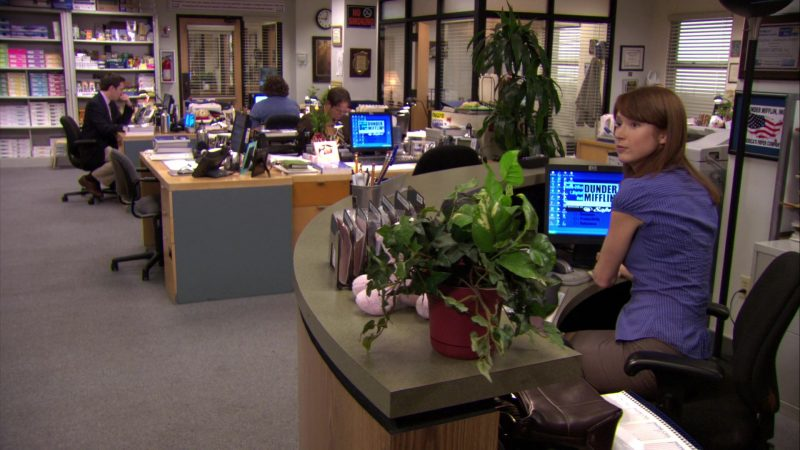 """HP Monitor Used by Ellie Kemper (Erin Hannon) in The Office – Season 7, Episode 4, """"Sex Ed"""" (2010) TV Show Product Placement"""