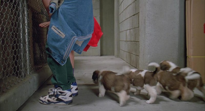 Reebok Sneakers Worn by Christopher Castile in Beethoven's 2nd (1993) - Movie Product Placement