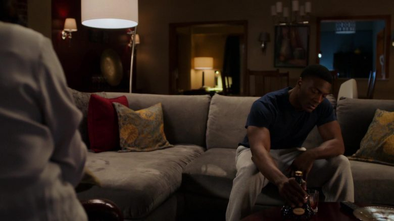 Hennessy Cognac in City on a Hill - Season 1, Episode 7 (2019) - TV Show Product Placement
