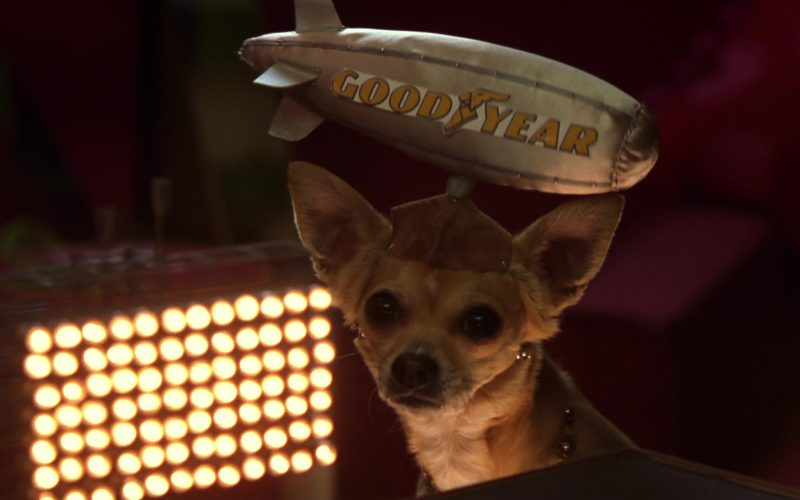 Goodyear in Legally Blonde 2 (1)