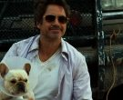 Oliver Peoples Gold Benedict Aviator Sunglasses Worn by Robert Downey, Jr in Due Date (11)