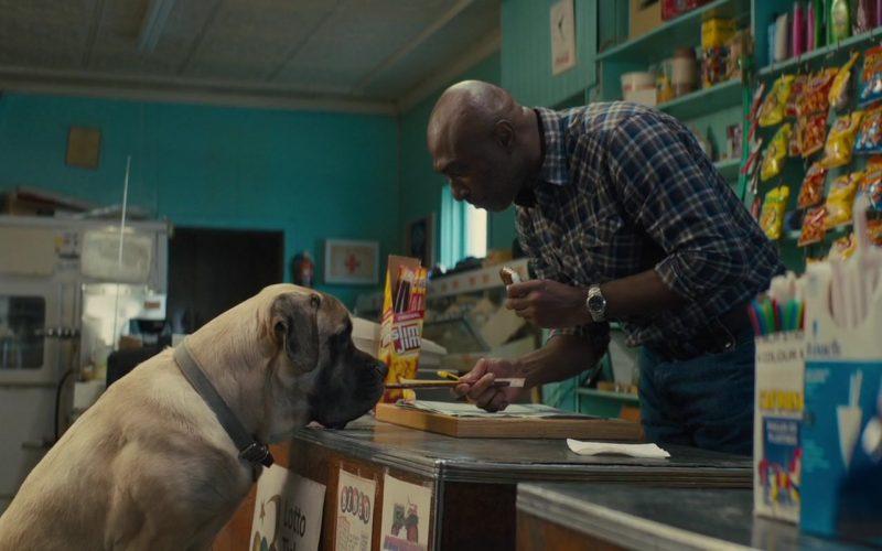 Slim Jim in A Dog's Journey
