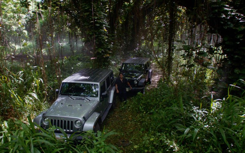Jeep Wrangler Cars in Hawaii Five-0