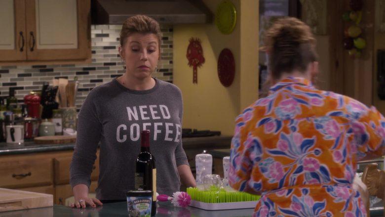 Ben & Jerry's Ice Cream in Fuller House Season 5 Episode 7 (1)