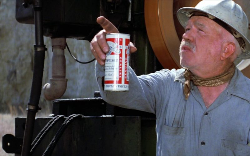 Budweiser Beer in The Outsiders (1)