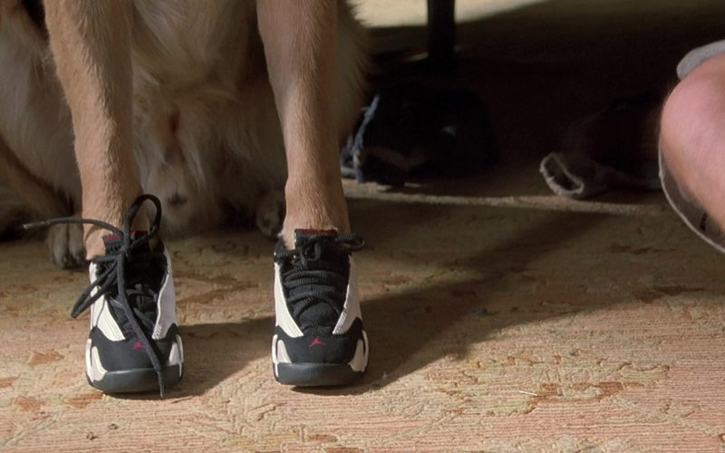 Jordan Sneakers Worn by German Shepherd Mac as Jerry Lee in K-911 (1999)