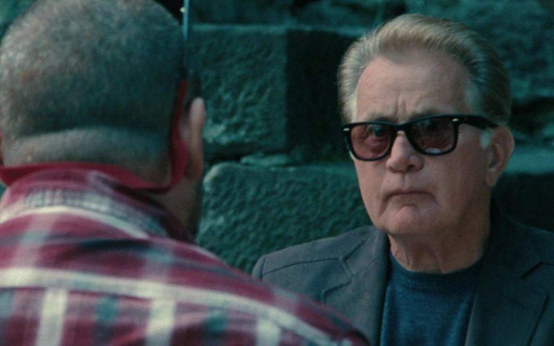 Ray-Ban Sunglasses Worn by Martin Sheen in The Way (1)